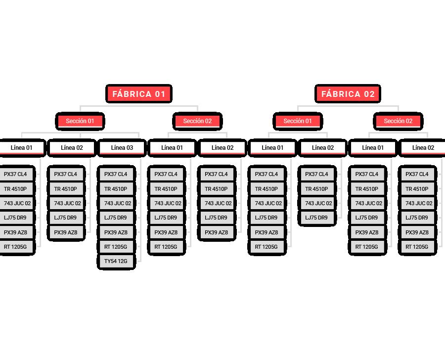 Estructura de activos